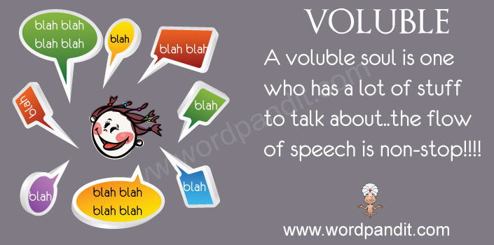 picture vocabulary of voluble
