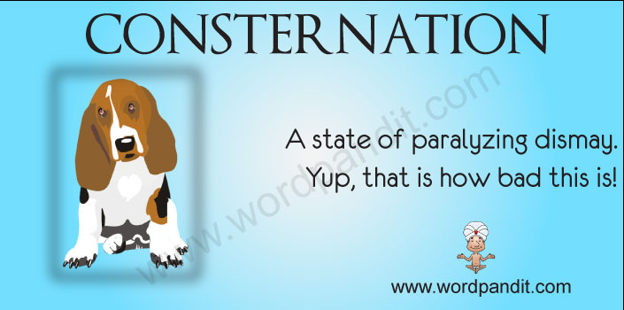 Consternation means