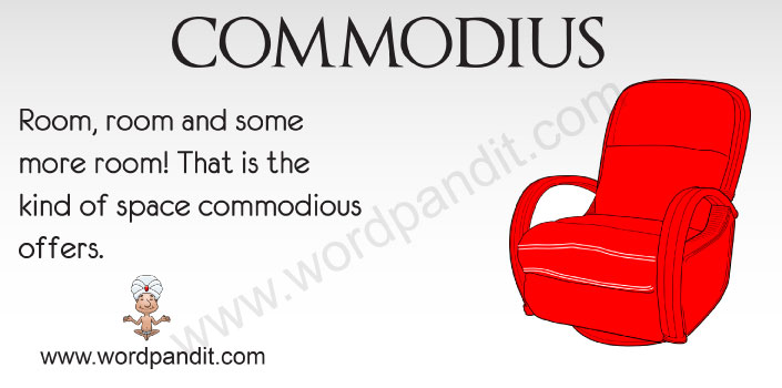 Picture for Commodious