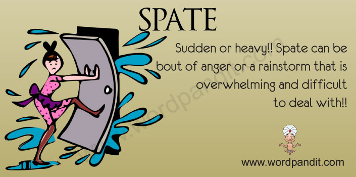 picture for spate