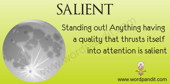 Picture for salient