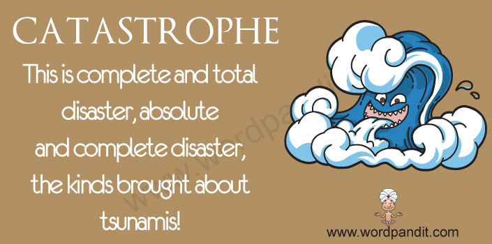 Picture for catastrophe