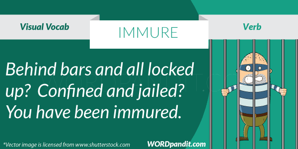 picture for immure