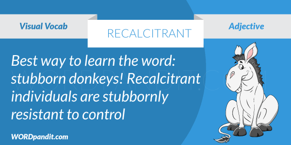 picture for recalcitrant