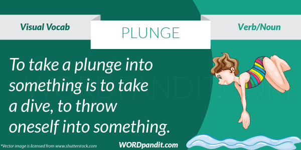picture for plunge