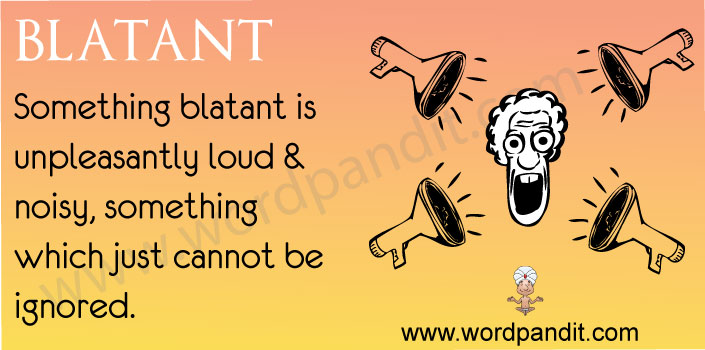 picture vocabulary for blatant
