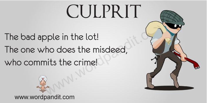 Picture of Culprit
