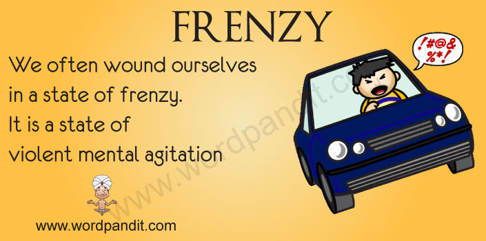 picture vocabulary for frenzy