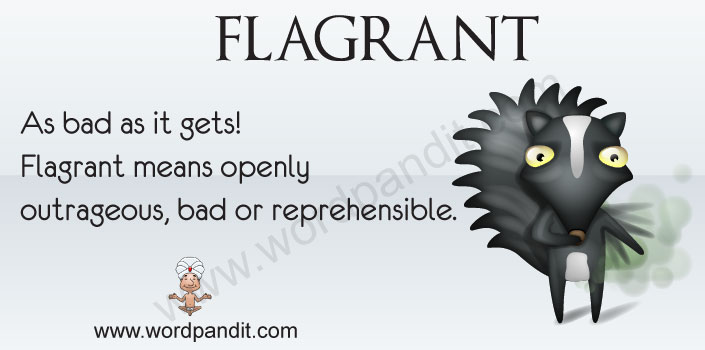 picture vocabulary for flagrant