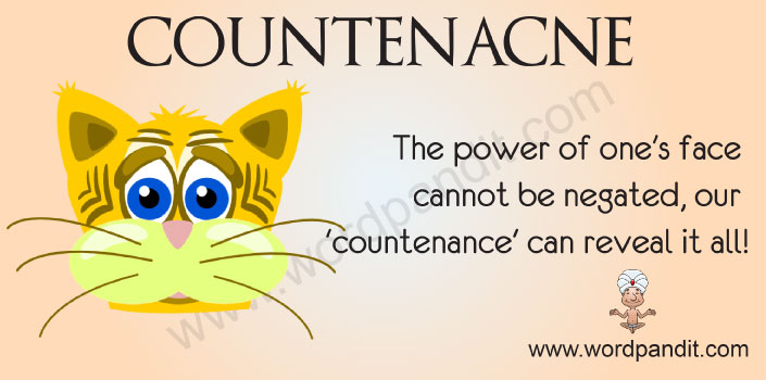 Picture for Countenance