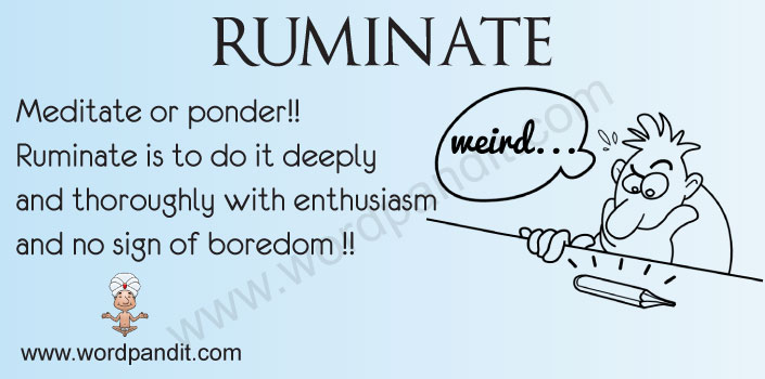 Picture for ruminate