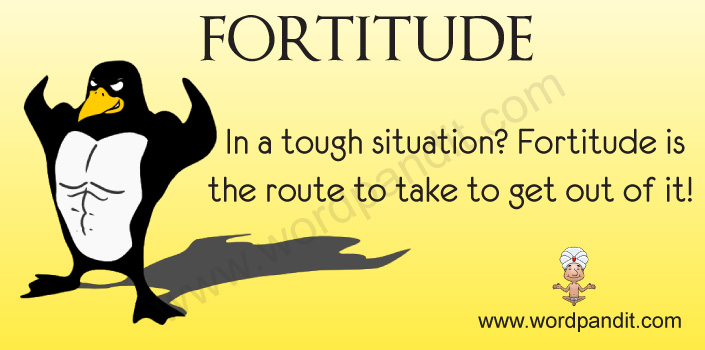 Picture for Fortitude