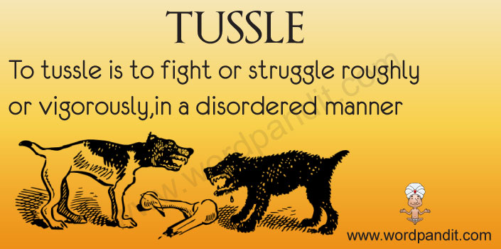 Picture for Tussle