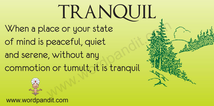 Picture for Tranquil