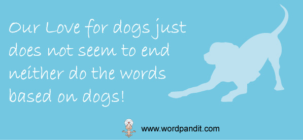 words related to dogs