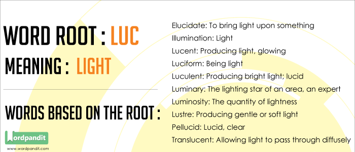 List of Words Containing Luc Root Word: Learn Words related