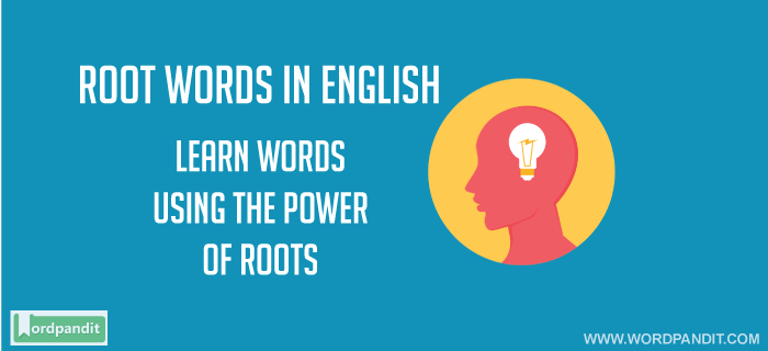 Root Words in English