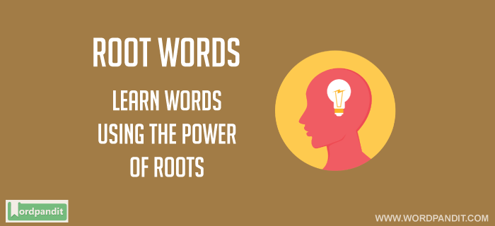 Mini Root Word