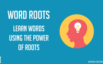 Brachi Root Word