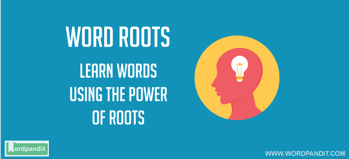 Roots of words