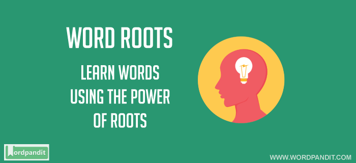 All about the Homo Root Word: Words based on Root Word Homo