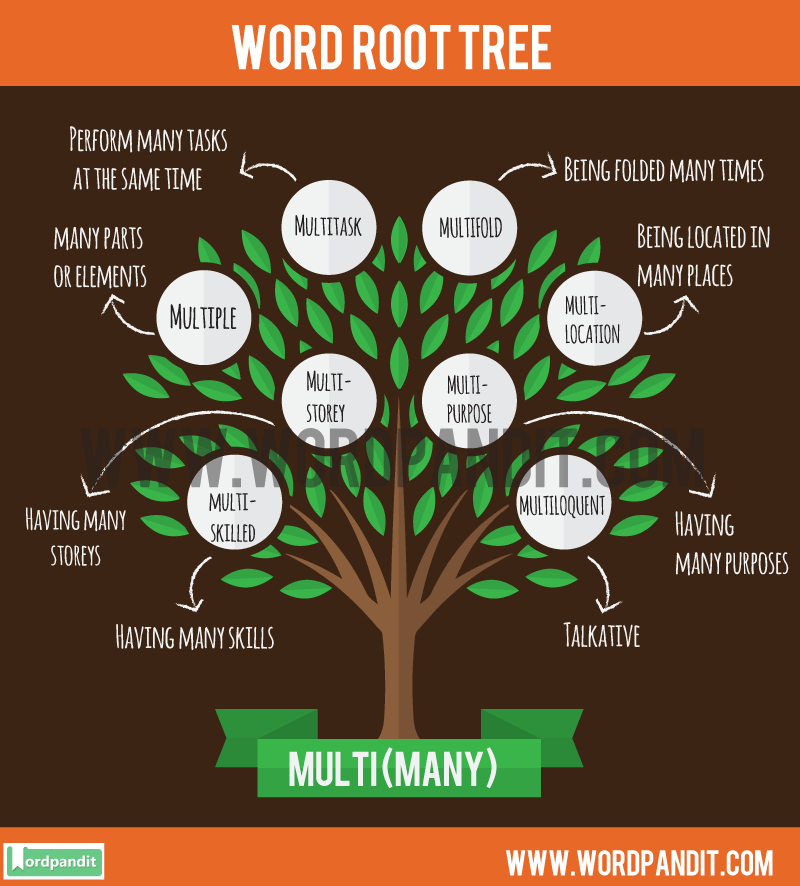 Multi Root Word: Learn words related to word root Multi