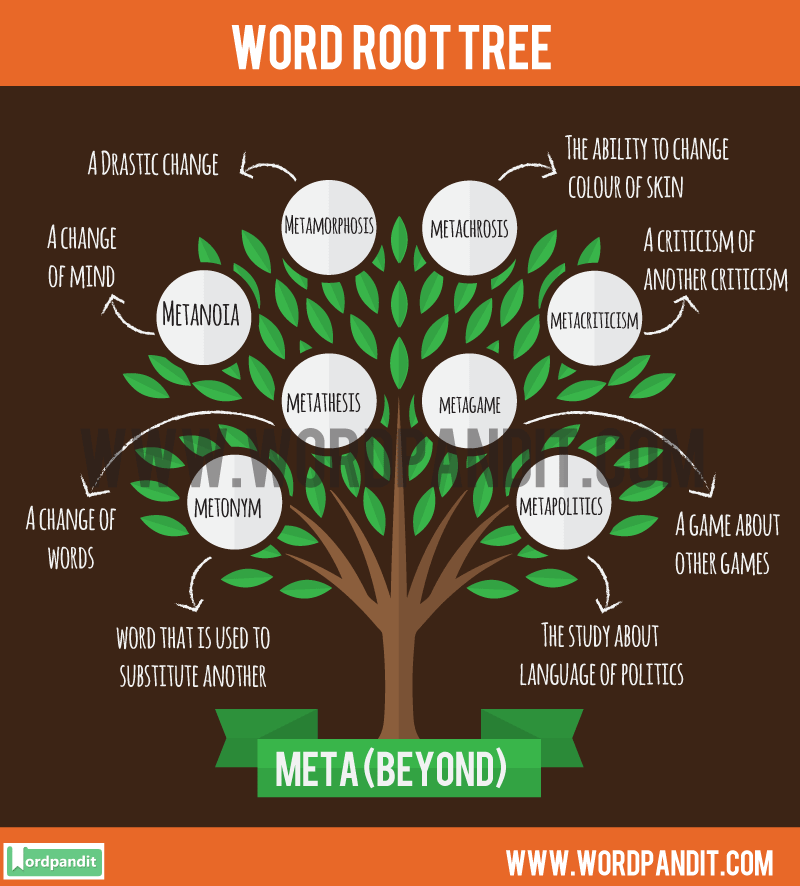 Mata Root Word: Learn words related to word root Mata