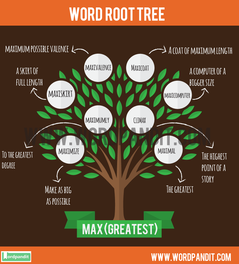 Max Root Word: Learn words related to word root Max