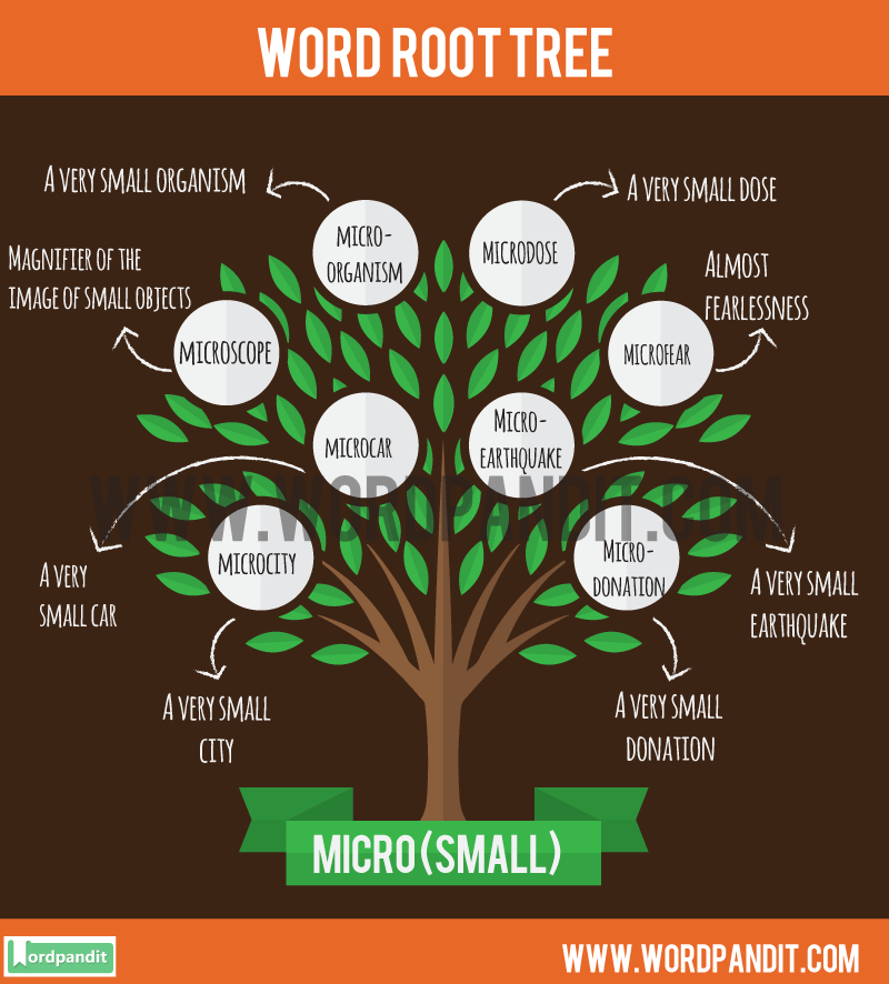 Micro Root Word: Learn words related to word root Micro