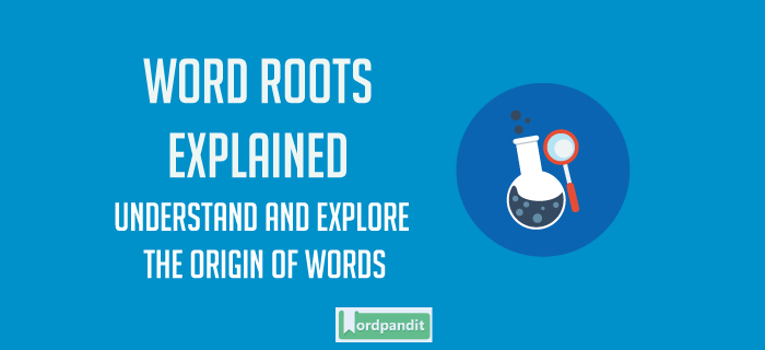 Ankylo Root Word