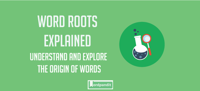 Ambul Root Word