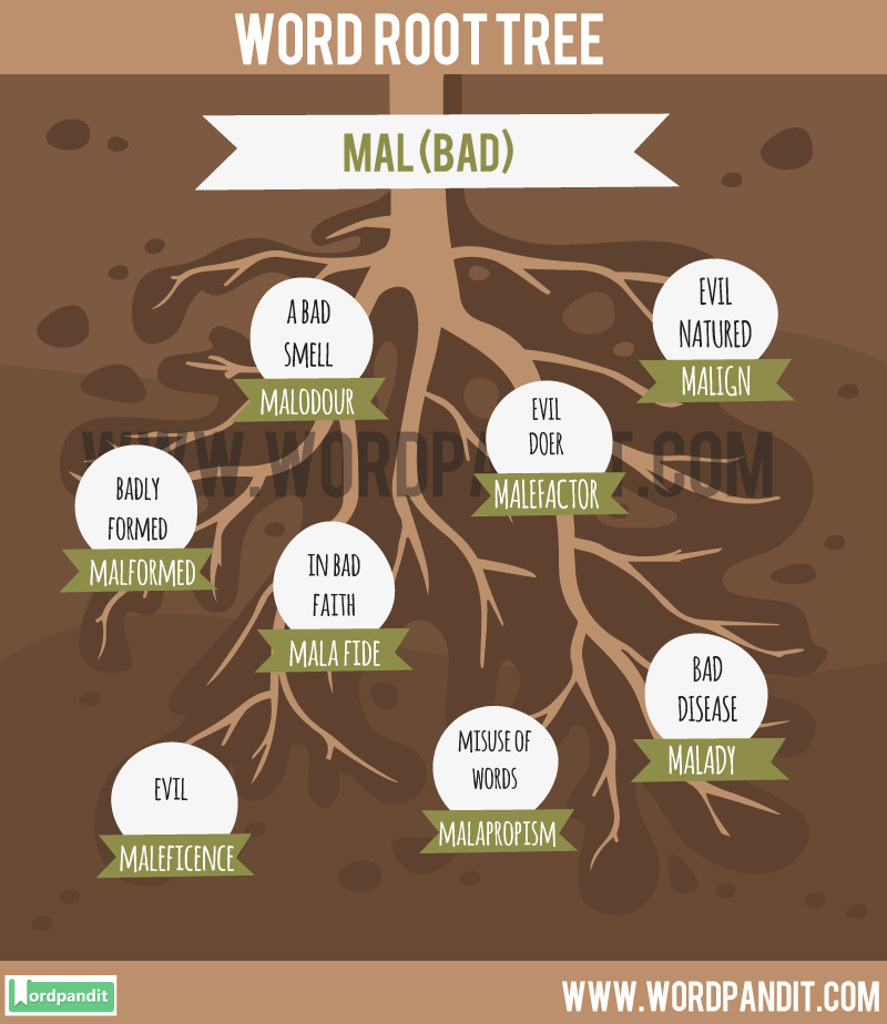 List of Words Containing Mal Root Word: Learn Words related