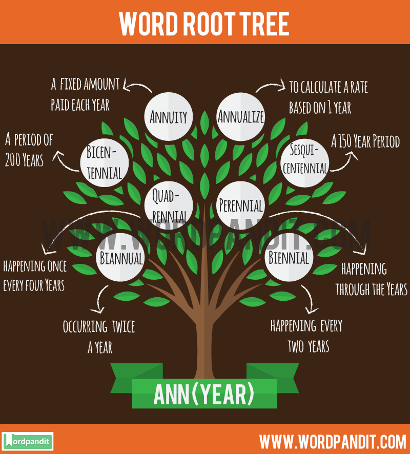 Ann Root Word: Learn words related to word root Ann