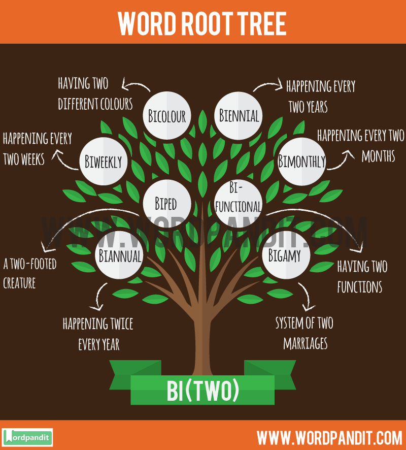 Bi Root Word: Learn words related to word root Bi