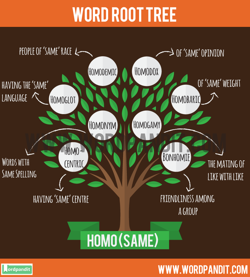 Homo Root Word: Learn words related to word root Homo