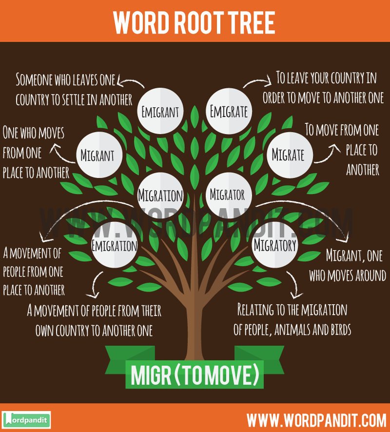 Migr Root Word: Learn words related to word root Migr