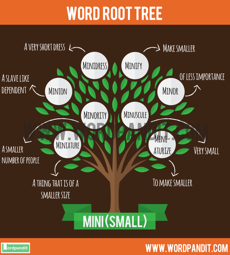 Mini Root Word: Learn words related to word root Mini