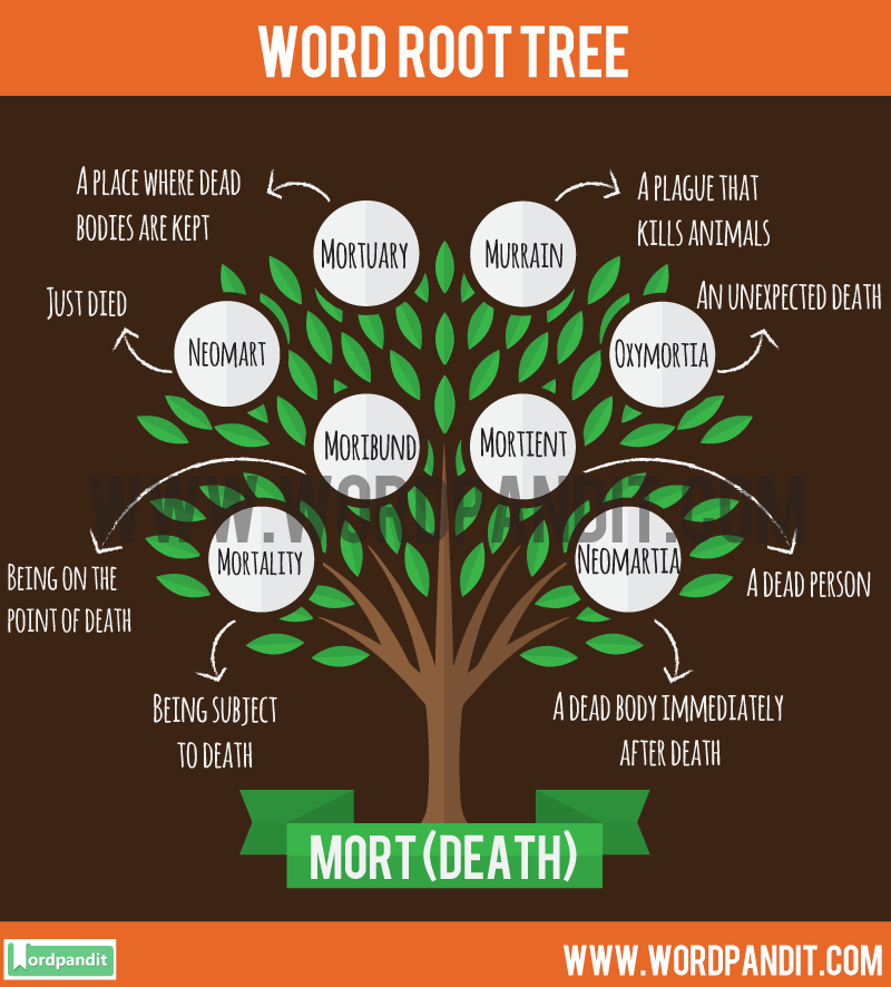 Mort Root Word: Learn words related to word root Mort