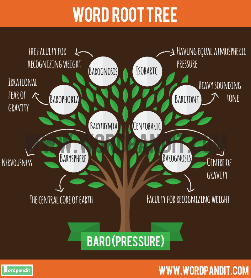 Baro Root Word: Learn words related to word root Baro