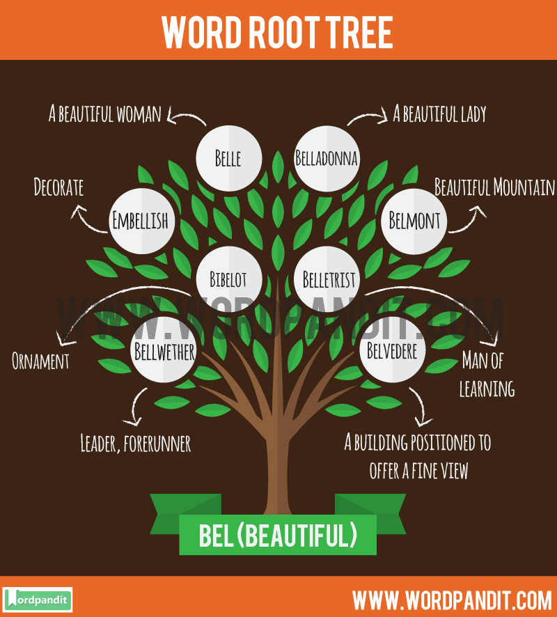 Bel Root Word: Learn words related to word root Bel
