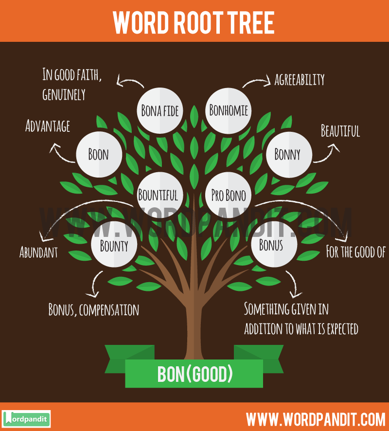 Bon Root Word: Learn words related to word root Bon