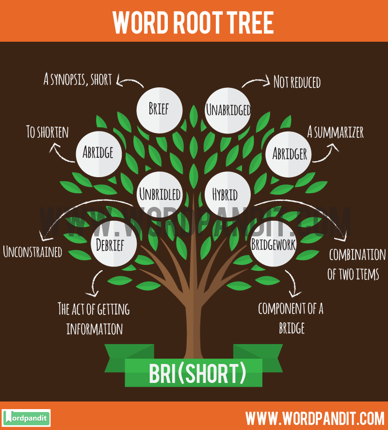 Bri Root Word: Learn words related to word root Bri