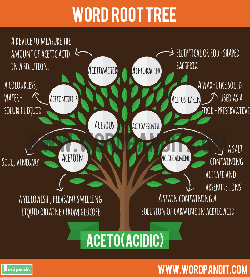 Aceto Root Word: Learn words related to word root Aceto