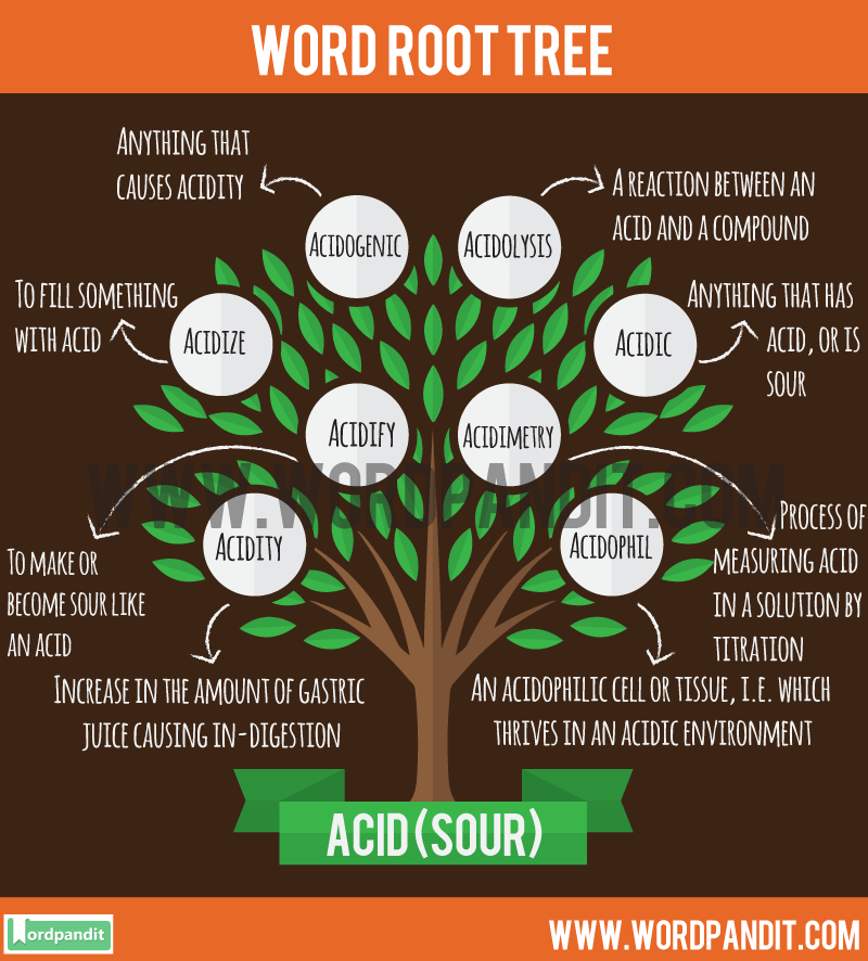 Acid-Root Word: Learn words related to word root Acid