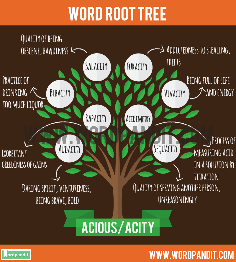 Acious/Acity Root Word: Learn words related to word root Acious/Acity