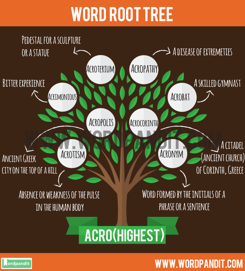 Acro Root Word: Learn words related to word root Acro