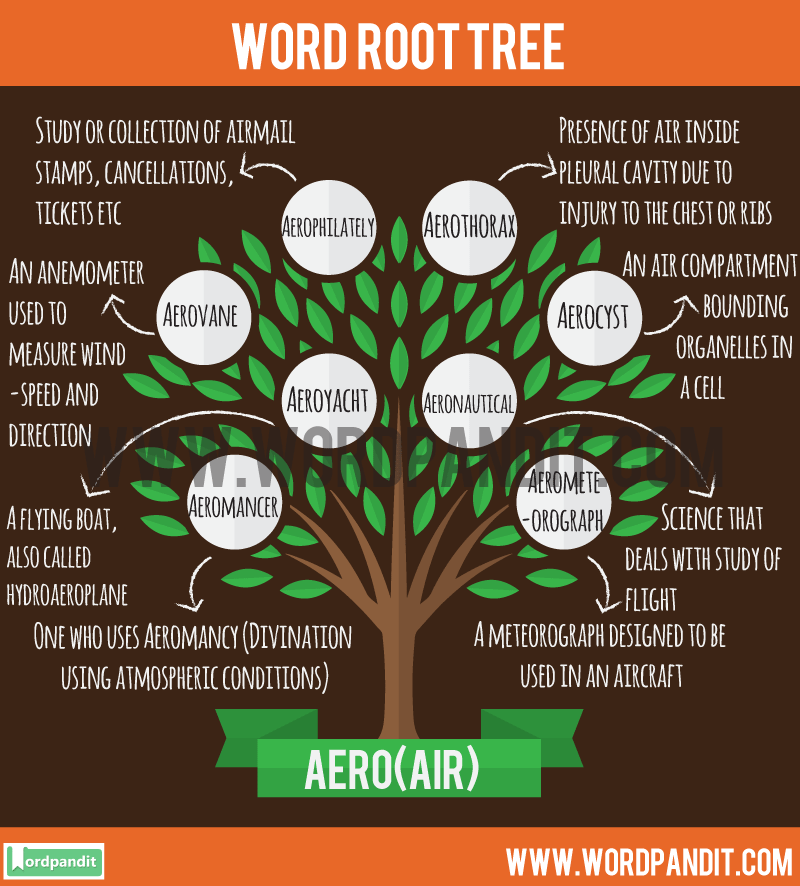 Aero Root Word: Learn words related to word root Aero
