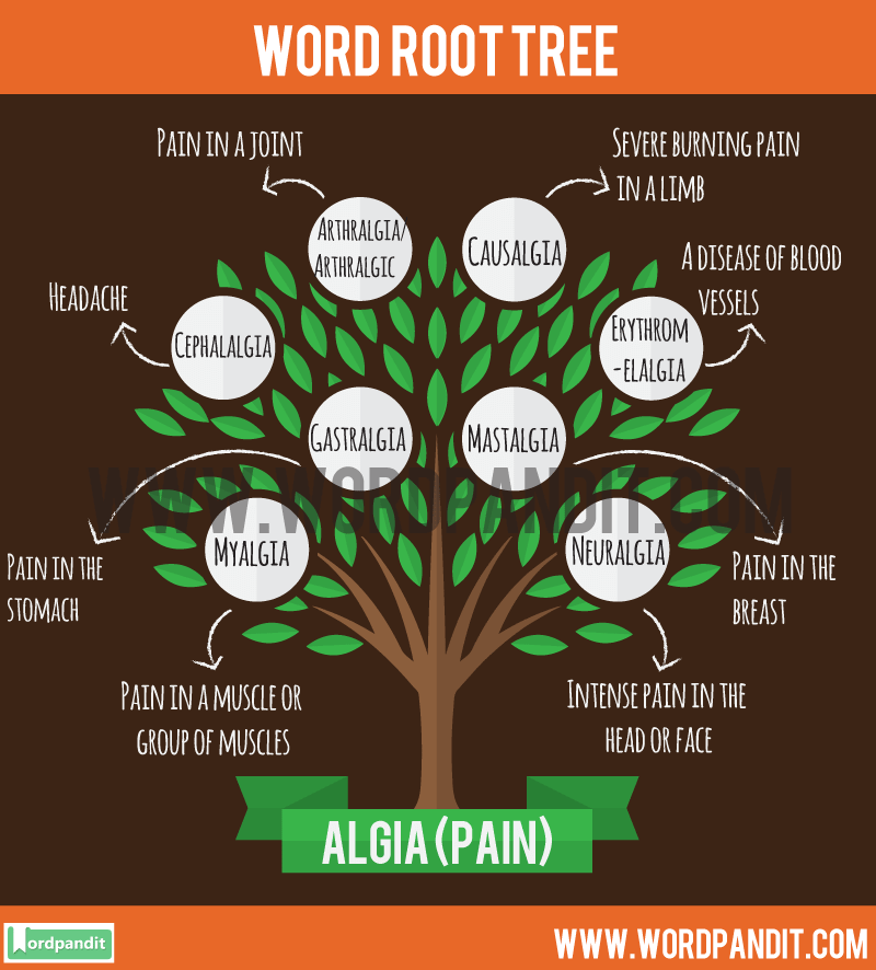 Algic Root Word: Learn words related to word root Algic