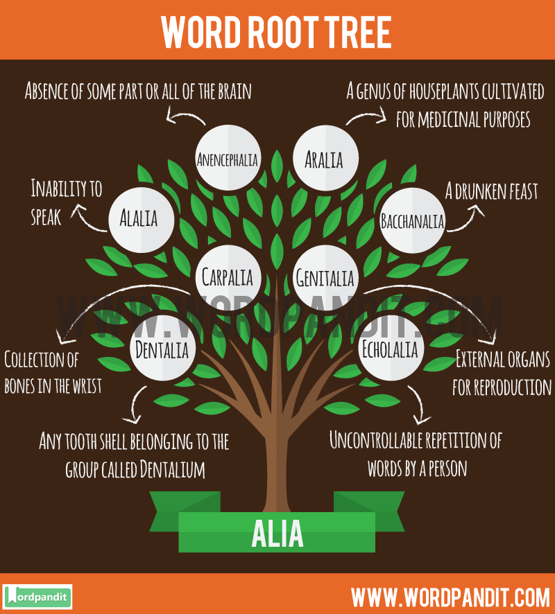 Alia Root Word: Learn words related to word root Alia