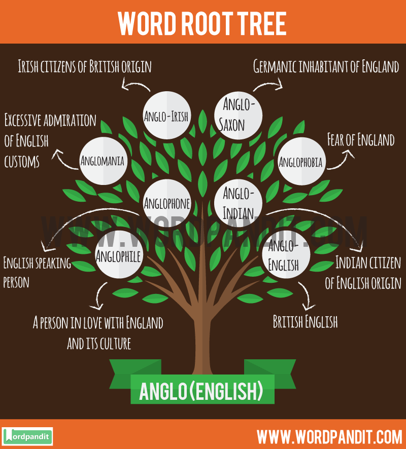 Anglo Root Word: Learn words related to word root Anglo